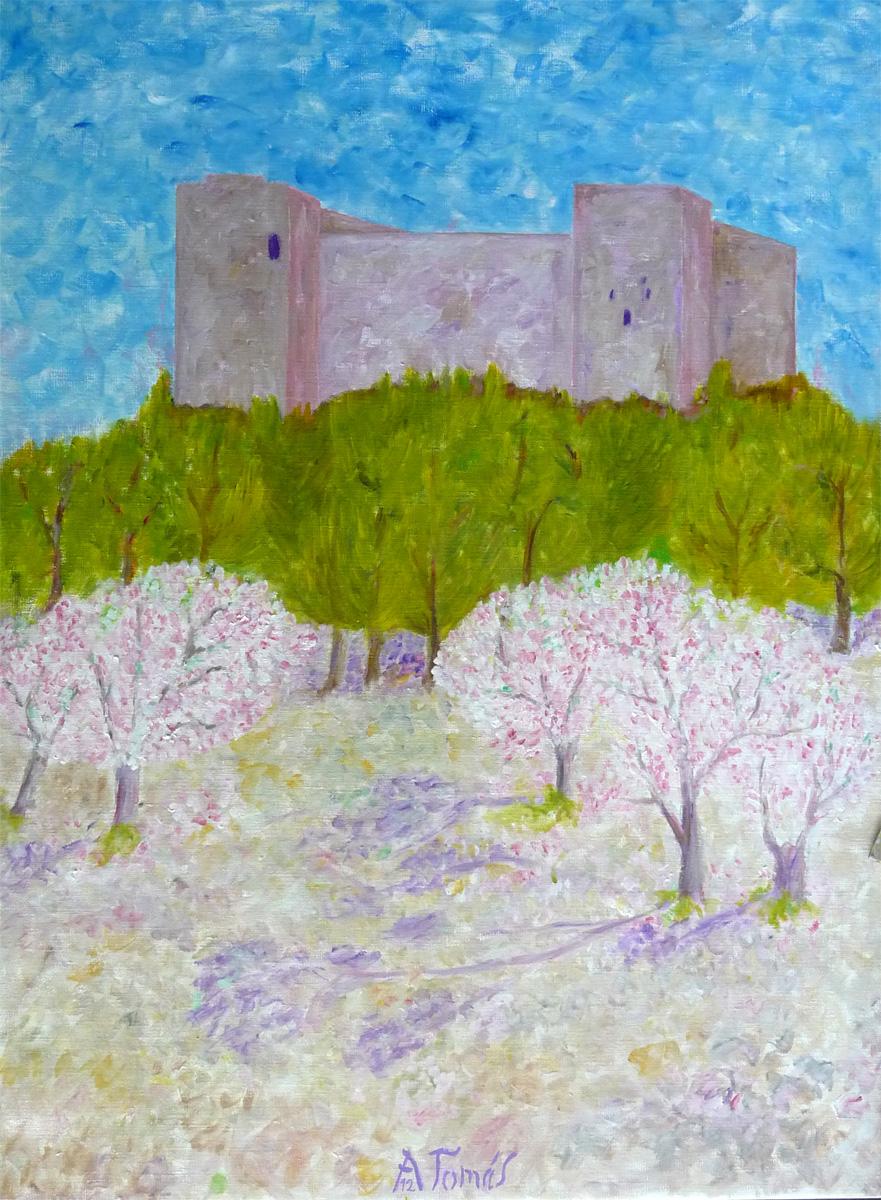 Kirschblüte bei Forna