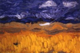 Das Rapsfeld - Harmonie in Gelb