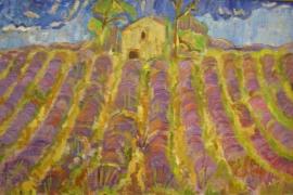 Lavendelfeld bei Grasse nach dem Regen